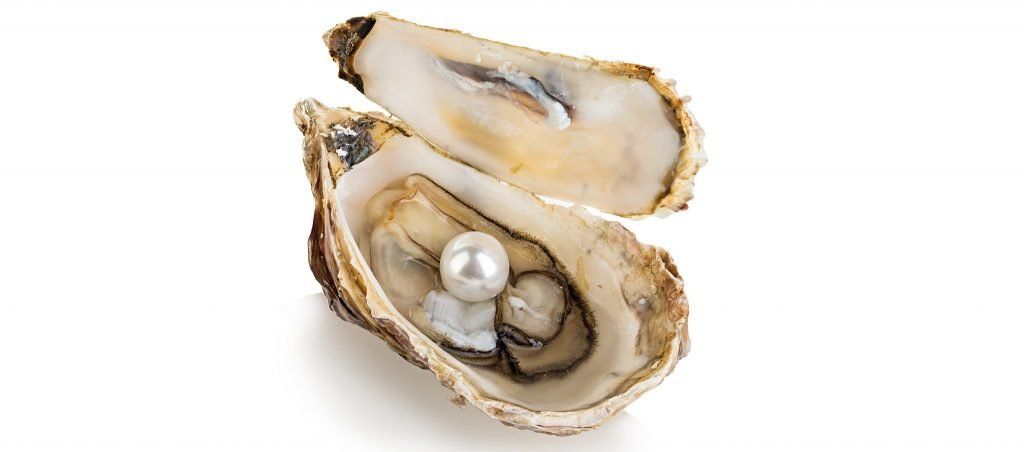PJP Food History Series: The History of Oysters